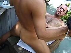Lovely herdboys fucking in meadow daddy gay porn