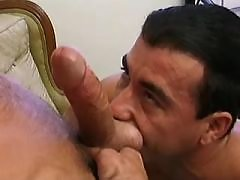 Gay swingers suck and fuck on sofas daddy gay porn
