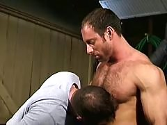 Lovely shepherds have fun in meadow daddy gay porn